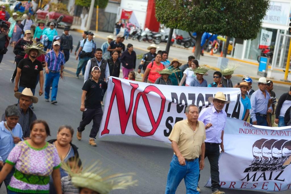 marcha contra megaproyectos Marichuy Tehuacán_ Daliri Oropeza